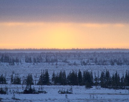 Our day begins with sunrise on the tundra