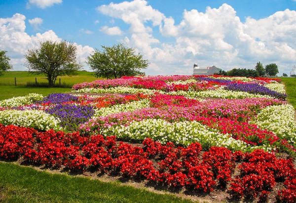 Quilt Gardens in Indiana, courtesy Elkhart CVB